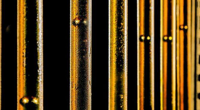 Какое масло облегчает холодный пуск мотора? (эксперимент ЗР)