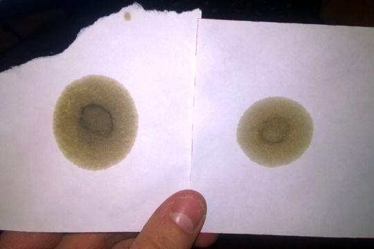 Тест моторного масла по одной капле